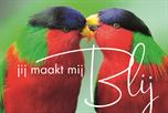 Jij maakt mij blij vogels