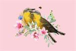 Vogels roze